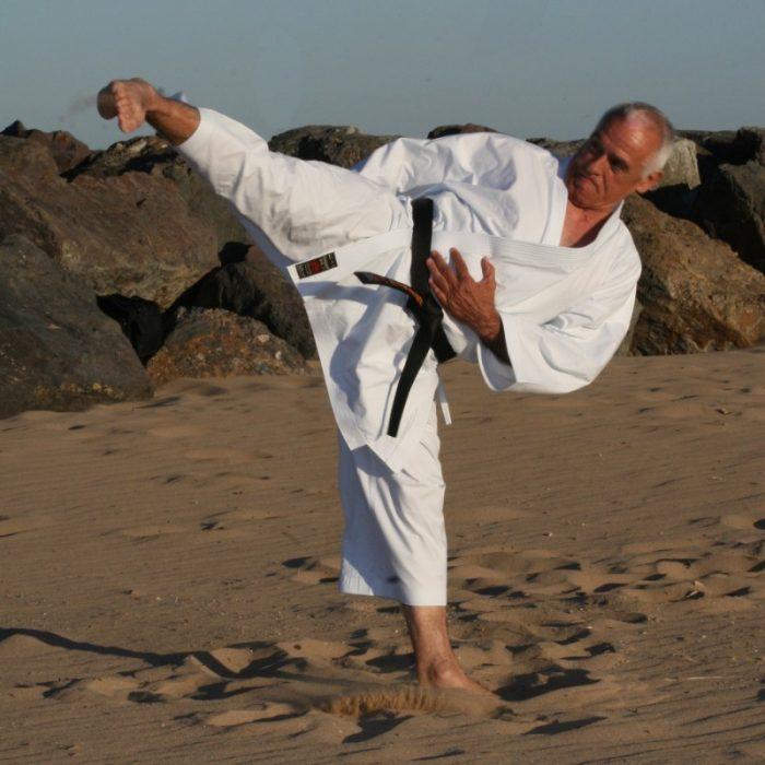 Karategui Shureido Mugen
