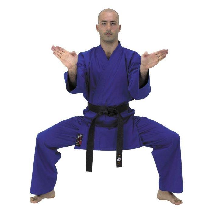 Karategui Entrenamiento Colores