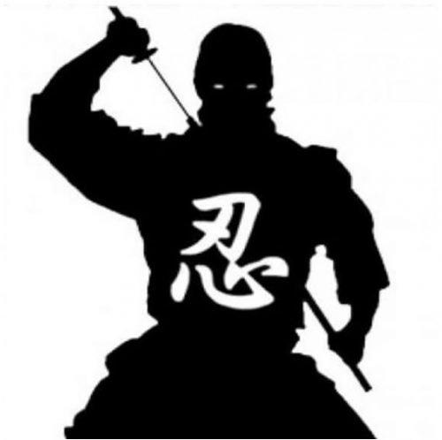 Ninjutsu
